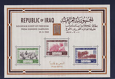 Irak  Iraq   bloc 4  campagne contre la faim