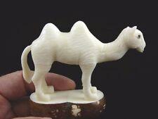 (tne-cam-260d) albino white Camel desert wild TAGUA NUT nuts figurine carving