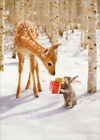 Avanti Press Bunny Giving Present to Deer Box of 10 Christmas Cards photo