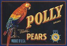 "RARE ORIGINAL 1930'S PARROT BEAUTY ""POLLY BRAND"" BOX LABEL ART SAN FRANCISCO CA"