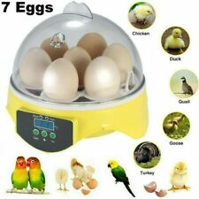 New listing Digital 7 Egg Mini Incubator Chicken Duck Bird Quail Hatcher Temperature control