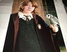 Rupert Grint In Harry Potter Hand Signed 11x14 Photo COA Ron Weasley RG 01 Proof