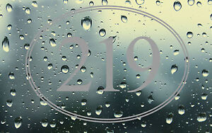 FROST ETCHED OVAL BORDER PERSONALISED DOOR NUMBERS,ETCHED FROST EFFECT GLASS NUM