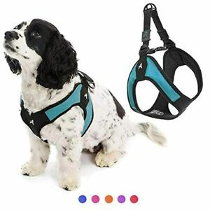 Gooby Dog Harness - Turquoise, Medium - Escape Free Easy Fit Patented Step-in