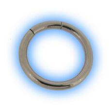 Heavy Gauge Segment Ring 2mm 12 gauge 12g Large PA Stretched Piercing Ear Lobe