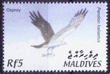 Western Osprey, Sea hawk, fish hawk, Birds of prey, Maldives 2002 MNH - D@