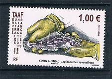 TAAF/FSAT Mint Never Hinged/MNH French & Colonies Stamps