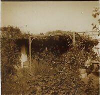 Giardino Floreale Foto PL53L1n15 Stereo Placca Da Lente Vintage