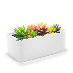 "10"" Rectangular Ceramic Succulent Planter Pot Container Window Box with Tray"