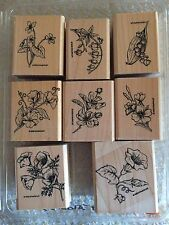 Stampin' Up Stipple Flower Set of 8 RARE Stamps- Retired 1998 Sweet Pea
