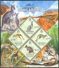 SOLOMON ISLANDS  2013 AUSTRALIAN FAUNA KANGAROOS SHEET  MINT NH
