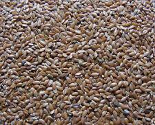 Leinsaat Leinsamen braun für Pferde Nager Vögel 10kg Gp/kg 1,49€