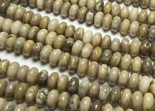 """15.5"""" Strand """"Petoskey"""" FOSSIL CORAL 8mm Rondelle Beads"""