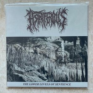"""ASTRIFEROUS The Lowers levels Of Sentience 12"""" EP"""
