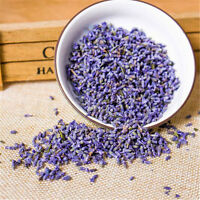10~100g Lavender Tea Dried Flowers Premium Scented Tea Organic Herbal Beauty Tea