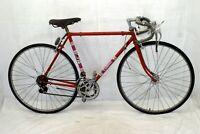 Turin Vintage Touring Road Bike Medium 55cm Brooks Weinman Simplex Steel Charity
