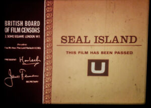 16mm FEATURE: SEAL ISLAND (1976) (Childrens Film Foundation) + FREE FLIPPER FILM