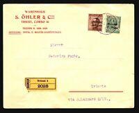 Austria Italian Occupation Cover to Trieste - Z16399