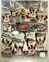DETROIT RED WINGS 2002 STANLEY CUP Champions LIMITED EDITION 11x14 PHOTO /500