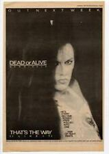 Dead Or Alive That's The Way (I Like It) Tour Advert NME Cutting 1984