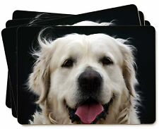Golden Retriever Picture Placemats in Gift Box, AD-GR50P