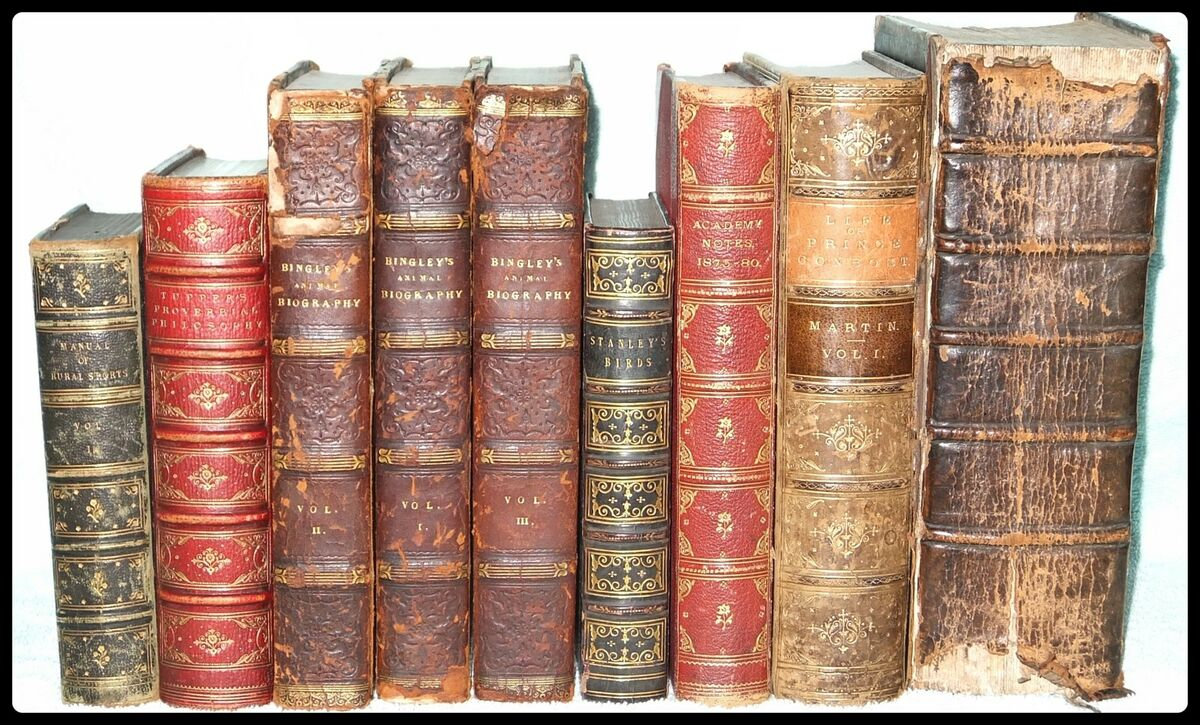 A and M Books and Collectables