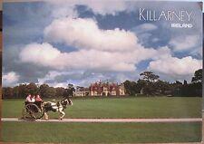 Irish Postcard MUCKROSS HOUSE Lakes of KILLARNEY Ireland Sanford J Hinde 2/761