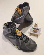 Nike Lebron Xii 12 Flight Pack Basketball Trainers UK 8.5 RARE SILVER 684593-08