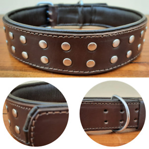 """Studded Dog Collar 2"""" Wide Genuine Leather For Large Breeds Heavy Duty Brown"""