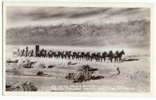 20 Mule Team Borax Wagon Train Death Valley CA California Antique RPPC Postcard