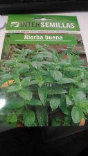 Hierba buena aromatica 1.200 aprox. Mentha spicata spearmint menta