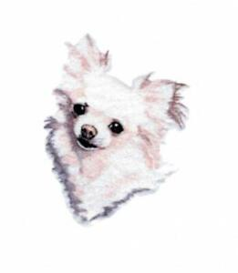 Machine Embroidered  Long Coated Chihuahua Applique  5.4W X 6.7H or 2.4W X 2.4H