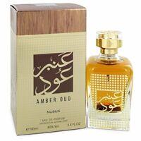 Nusuk Nusuk Amber Oud Eau De Parfum Spray 100ml Womens Perfume