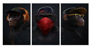 Cool Monkeys Swag Headphones Bandana Animals Art Canvas 3 Split Panels 20x30inch