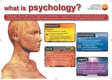 ¿ Cuál es la Psicología? Cartel Set - 5 grandes carteles