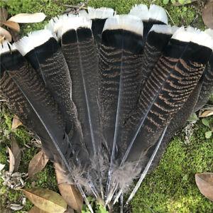 10/20/50/100 pcs unique wild Turkey tail feathers 6-12 inches / 15-30 cm