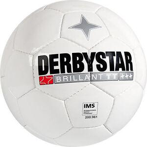 10er Set Derbystar Brilliant TT Gr. 5 Top Trainingsball Fußball auch einzeln