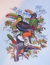 Eva Rosenstand TOUCANS Tropical oiseaux 30 14-213 Clara Waever point de croix