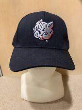Lehigh Valley Ironpigs (Phillies AAA) Adult Black Logo Cap -  New