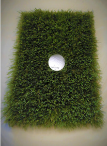 Golf Practice Driving Pitching Winter Green Mat 12 inch x 8 inch.