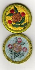 Fruit & Nut Growing Merit Badge, Type H, Blue Back Version (1972 - 2002), Mint!