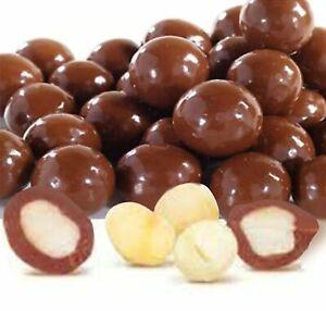 Chocolate Covered Macadamia by Its Delish (Milk Chocolate, 1 lb)