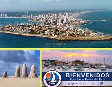 Uruguay PUNTA DEL ESTE Travel Souvenir Fridge Magnet