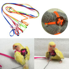 Pet Parrot Leash Bird Harness Outdoor Tortoise Strap Adjustable Training Rope uk