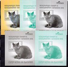 Bulgaria 2016 British Shorthair Cat 5 Blocks S/S Mnh Rare