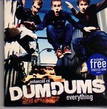 (CN384) Dum Dums, Everything - 2000 CD