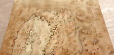 "Pimento Pepperwood Burl wood veneer 12"" x 17"" raw no backing 1/42"" thickness"