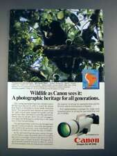 1985 Canon F-1 Camera Ad w/ Spectacled Bear