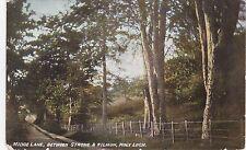 Midge Lane Between Strone & Kilmun, HOLY LOCH, Argyllshire