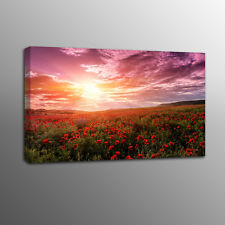 Canvas Print Art Red Poppy Flowers Painting Wall Canvas Art Home Decor No Frame